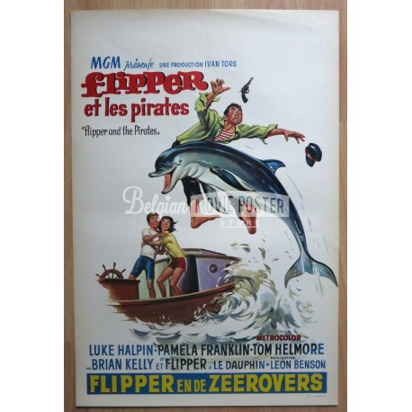 FLIPPER AND THE PIRATES